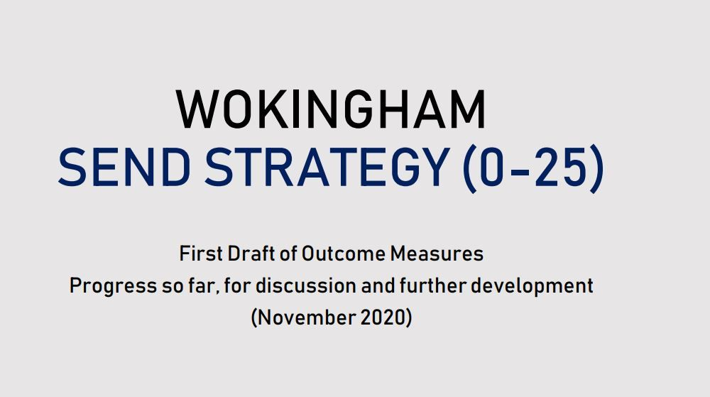 SEND Strategy 2020 OUTCOME MEASURES